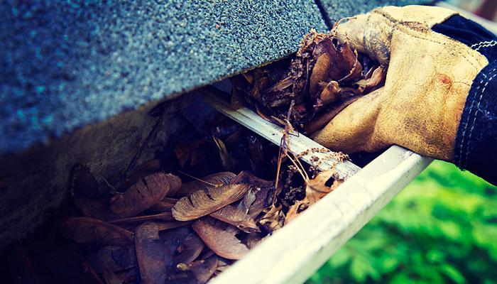 Hampshire Handyman Services gutter clearing services