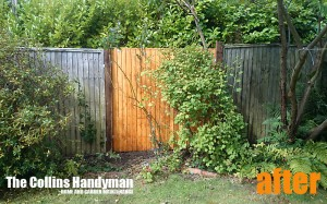 Fencing After Photo